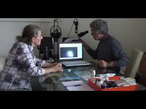 Harmonisierung von Radioaktivität und Röntgenstrahlenbelastung - Dunkelfeldanalyse